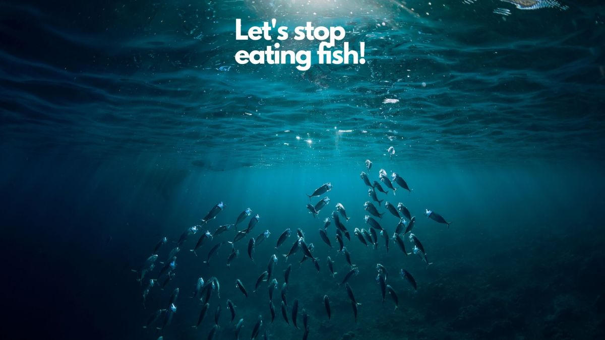 stop eating fish